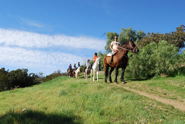 Information About Los Angeles Horseback Riding Los Angeles