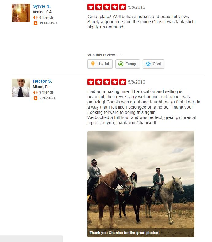 Reviews | Los A... Los Angeles Horseback Riding